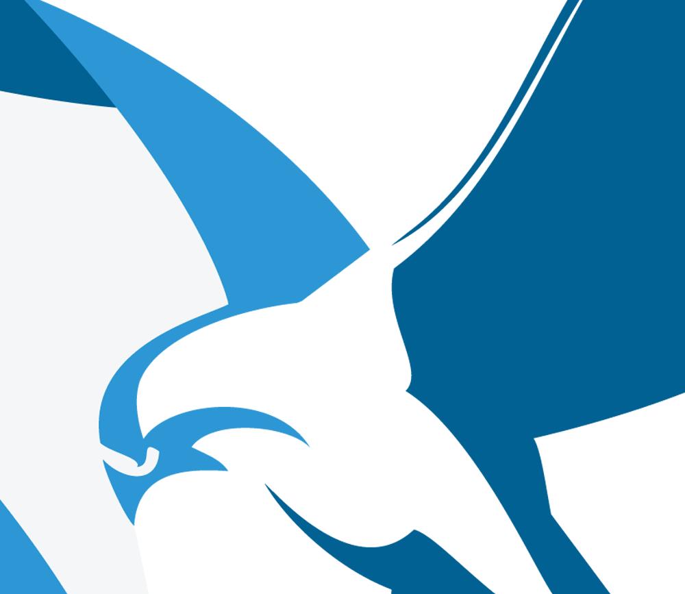 Visual of the bird from the JOHCM logo